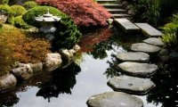 D&D Japanese Garden - Brothers Role