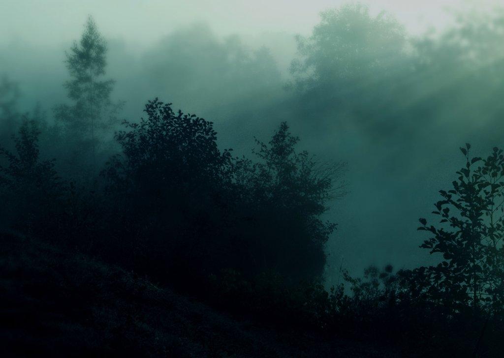 the svalich woods audio atmosphere